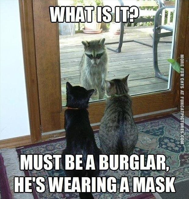 Yep, burglars wears masks…