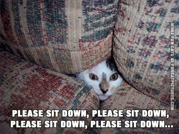 Please sit down…