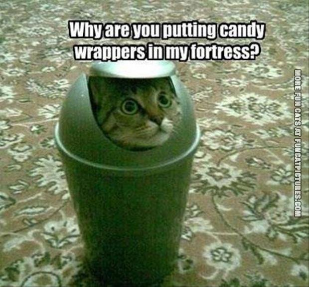 Candy wrappers in my fortress