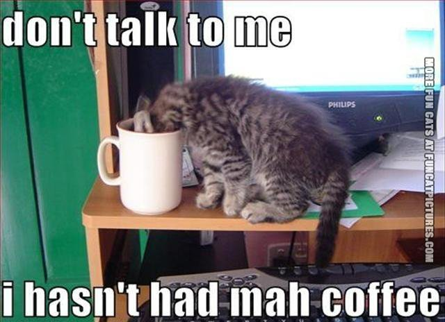 Not before my coffee