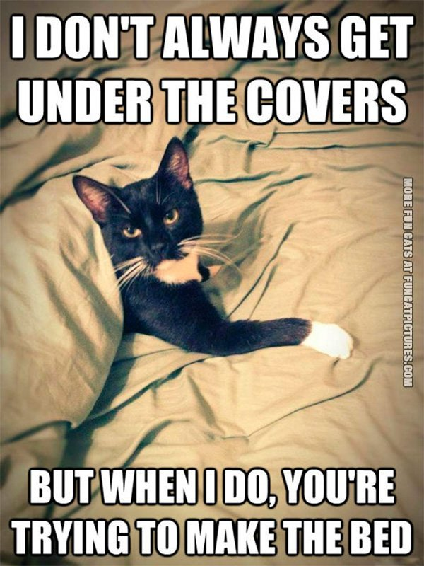 Don't always get under the covers