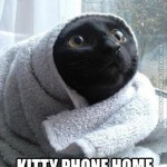Kitty phone home