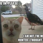 Not the mighty hunter