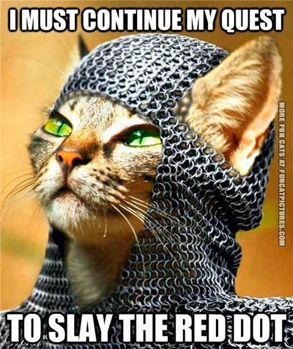 quest-to-slay-the-red-dot-cat