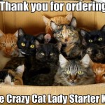 Cat lady starter kit