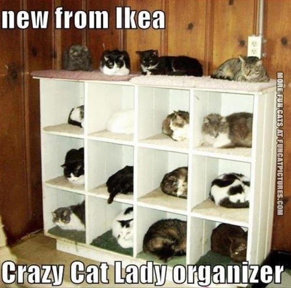 Cat Lady Organizer