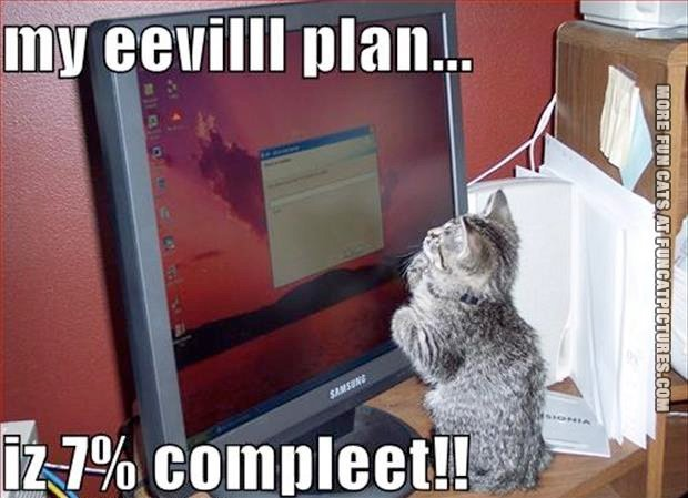 fun-cat-picture-evil-plan-is-almost-complete