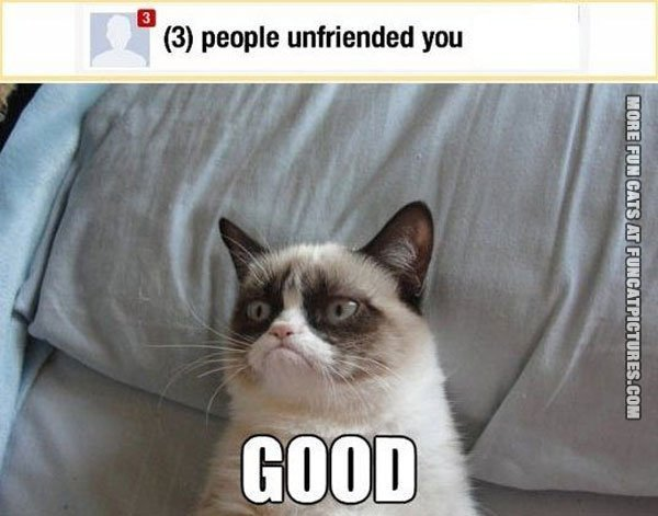 Grumpy gets unfriended