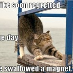 Swallowed a magnet