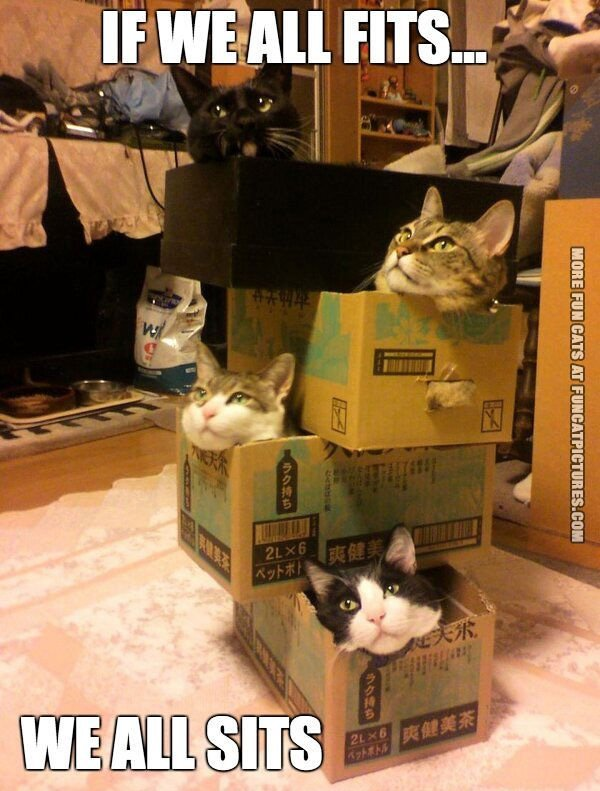 If we all fits…