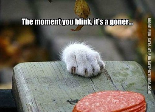 The moment you blink