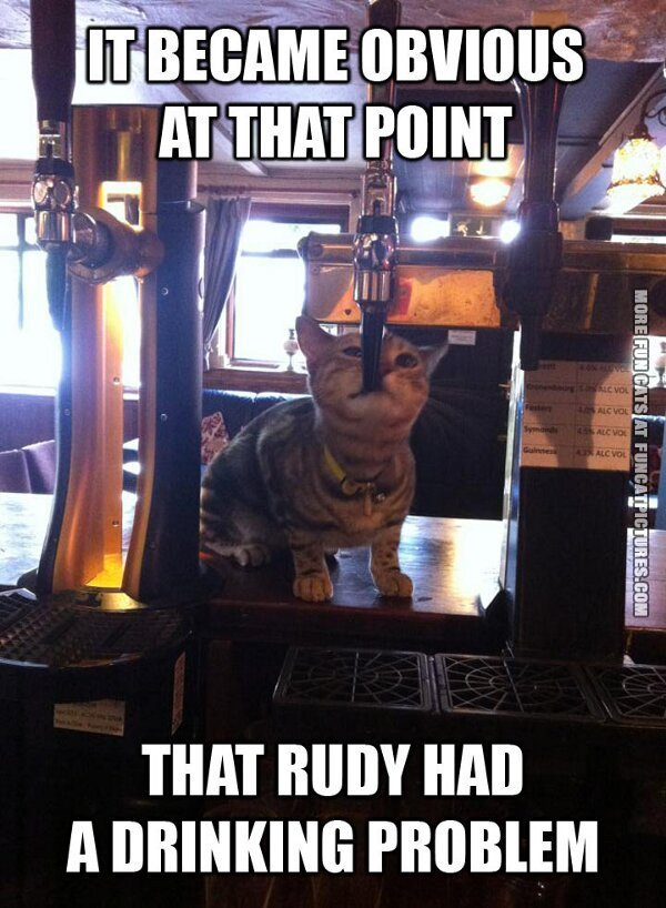 Cat with a drinking problem