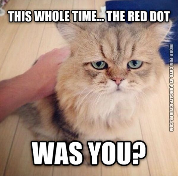 Red Dot dissapointment