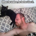 Cat's just wanna be kissed