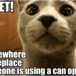 Cats never miss the can opener