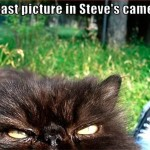 The last picture in Steve's camera