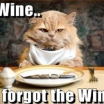Cat at the table wants wine