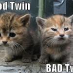Good Twin Cat VS Bad Twin Cat
