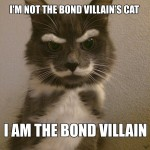 Not the Bond villain's cat