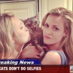 Breaking news about cats