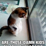 Standing cat looking at kids