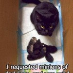 These kittens are not minions of darkness