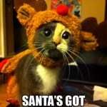 Cat wants to be Santa's new reindeer