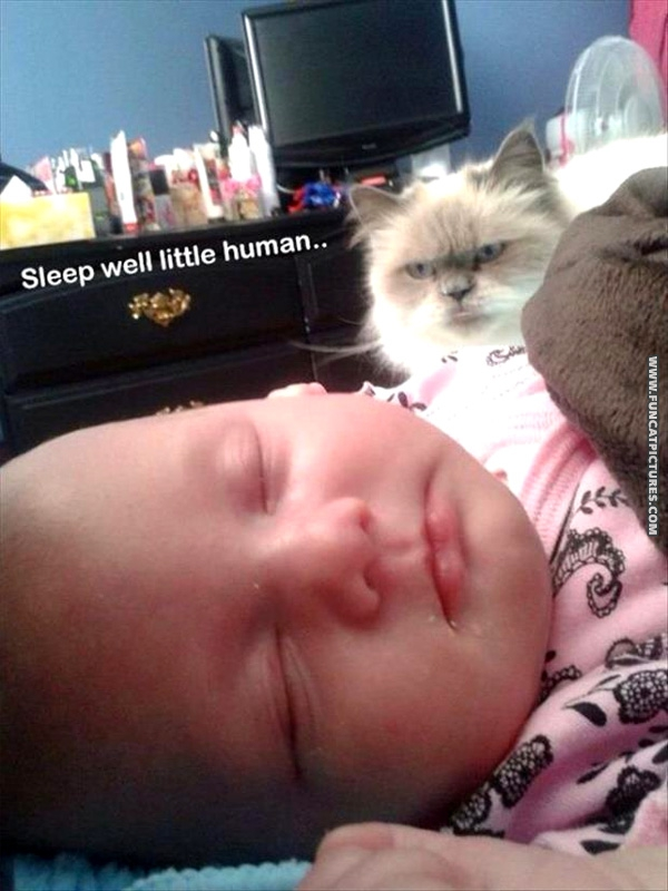 Sleep well little human