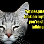 The cat's trying to tell you something