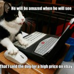 That sneaky cat sold the dog