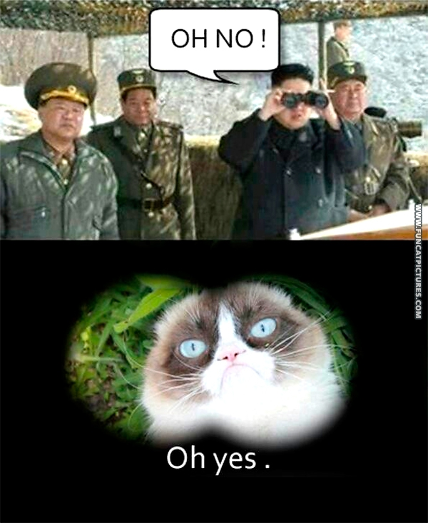 Is Grumpy moving to North Korea?