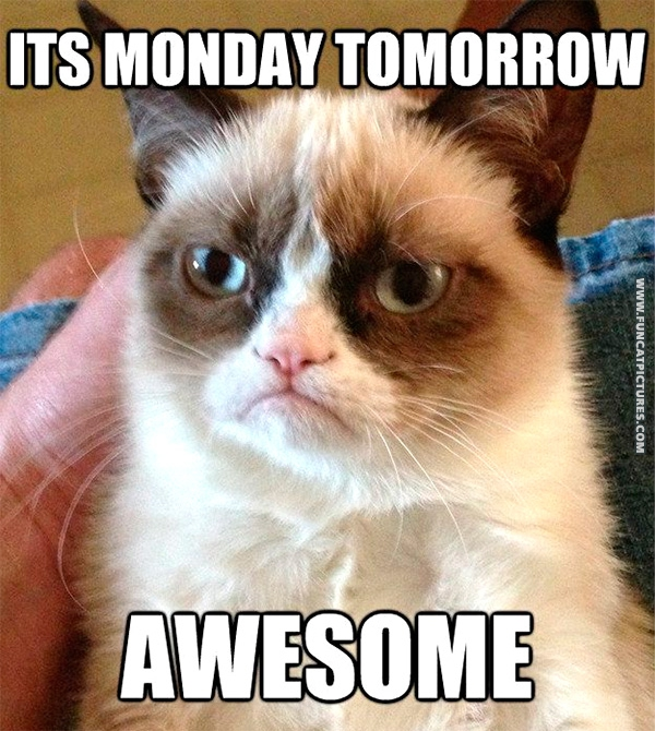 Grumpy is the only one that loves mondays