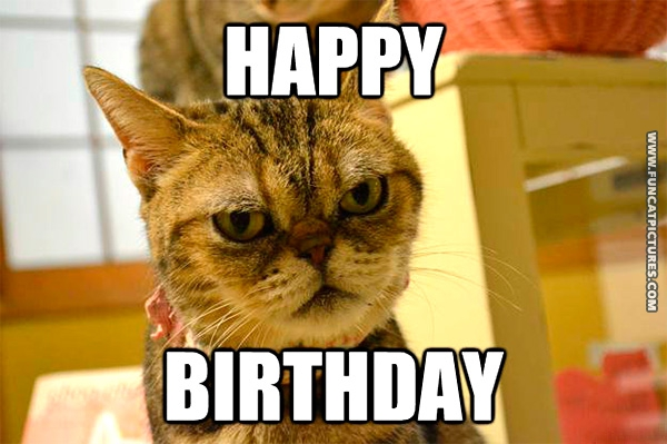 funny-cat-pictures-happy-birthday