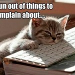Even cats can run out of things to complain about