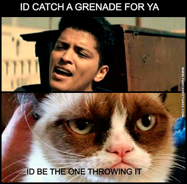 If Grumpy ever met Bruno