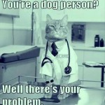 Cat doctor always gives you the right diagnosis