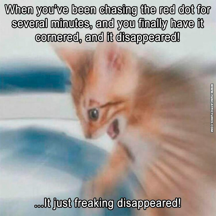 That moment when the red dot disappeared