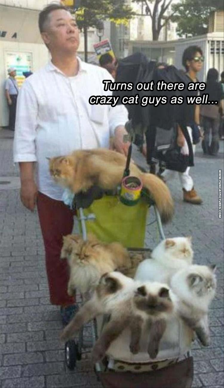 Just walking his cats…