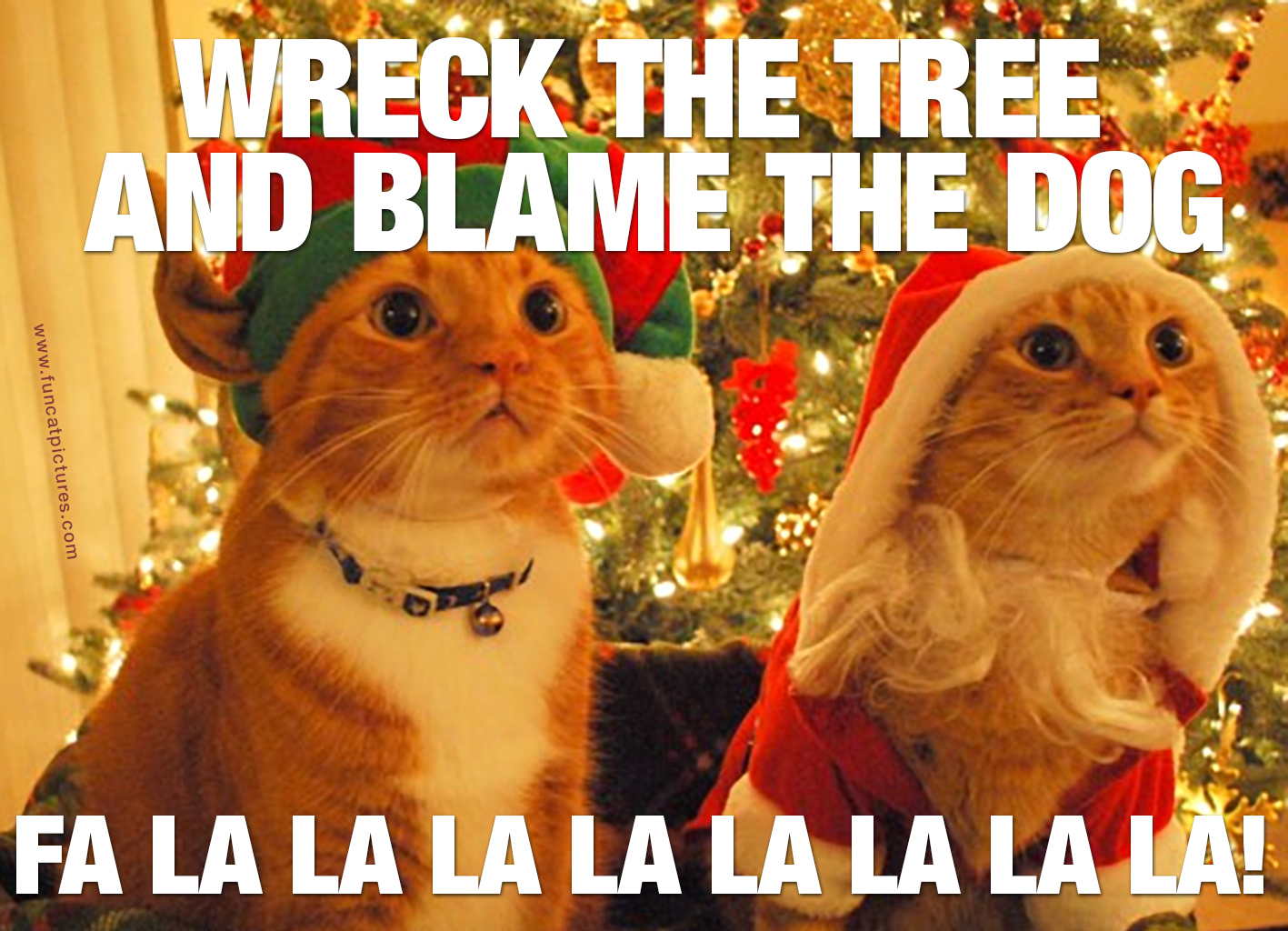SANTA CATS IN FRONT OF CHRISTMAS TREE